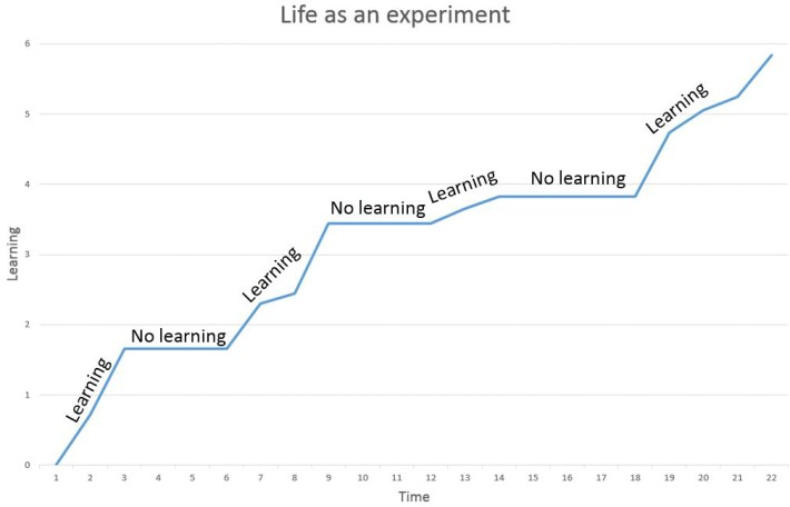 Life as an experiment